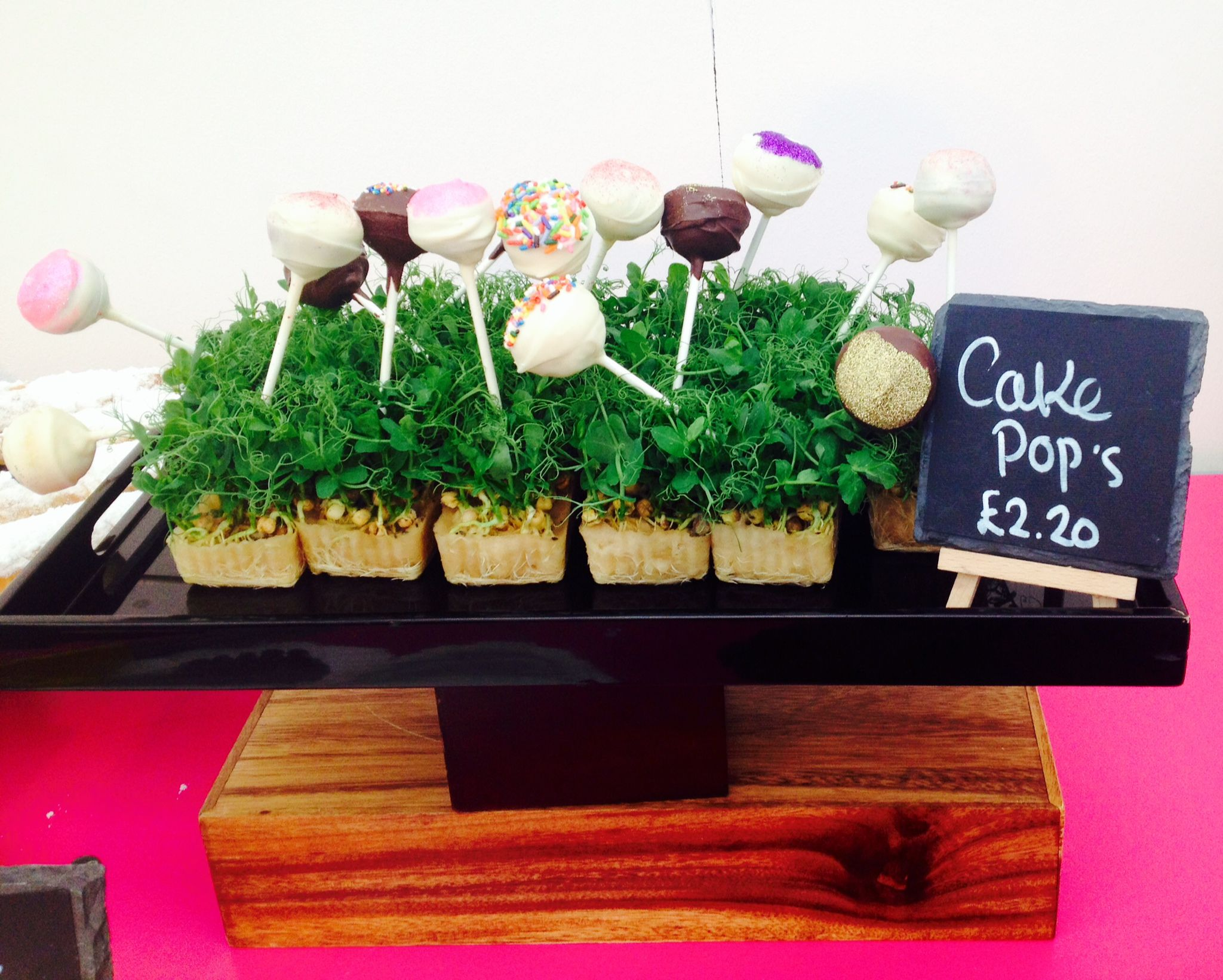 Cake Pops made by Chilli Bees Catering - they tasted and looked amazing.