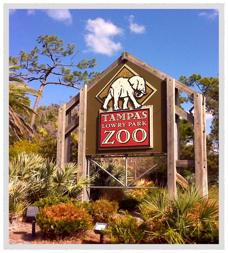Tampa, Fl. Busch Gardens is the name of two amusement