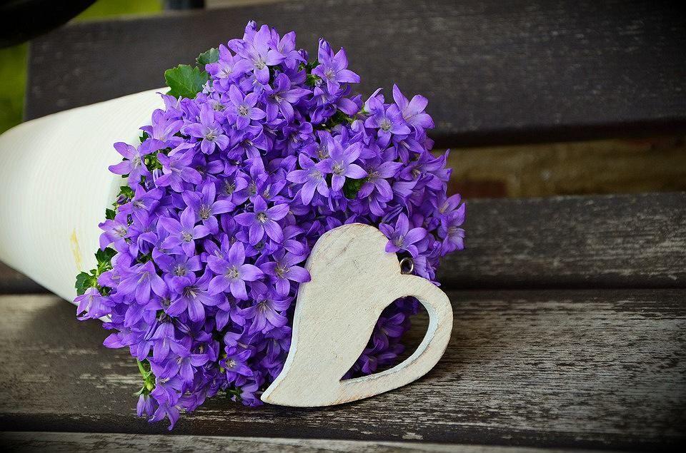 Ozdobny Dzbanuszek Wcale Nie Musi Grzecznie Stac Z Polozonego Kwiaty Wysypuja Sie Jak Z Rogu Obfitosci Flower Pots Purple Flowers Lilac Bouquet
