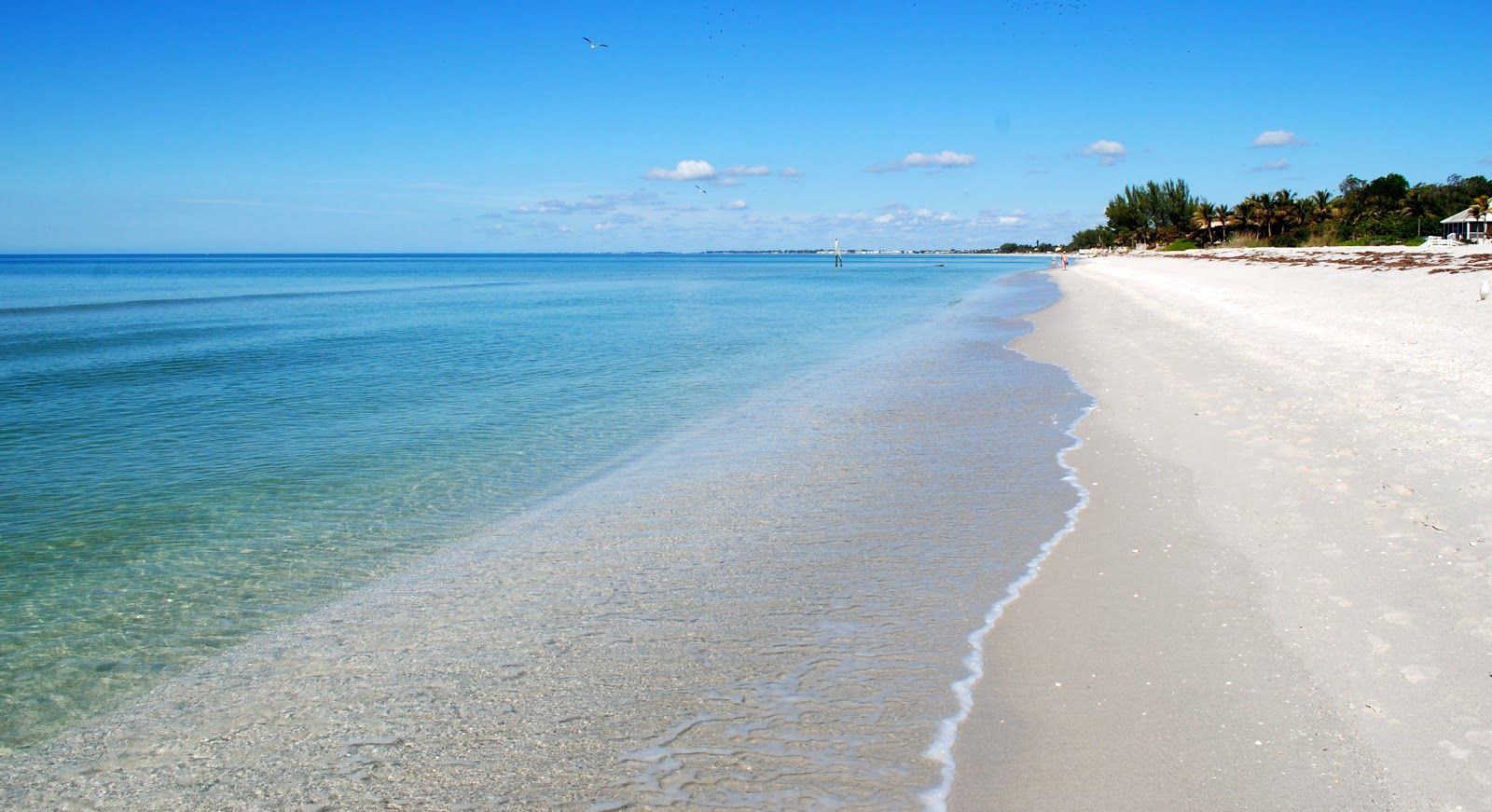 Charter our yacht and see beautiful Gasparilla Island in ...