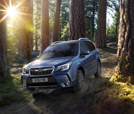 Go Anywhere Forester Is Go Anywhere For Good Reason Essential Journeys