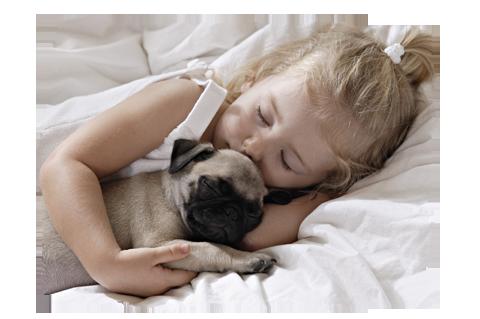 Blog Guia de Raças: Seu filho está preparado para ter um cachorro?