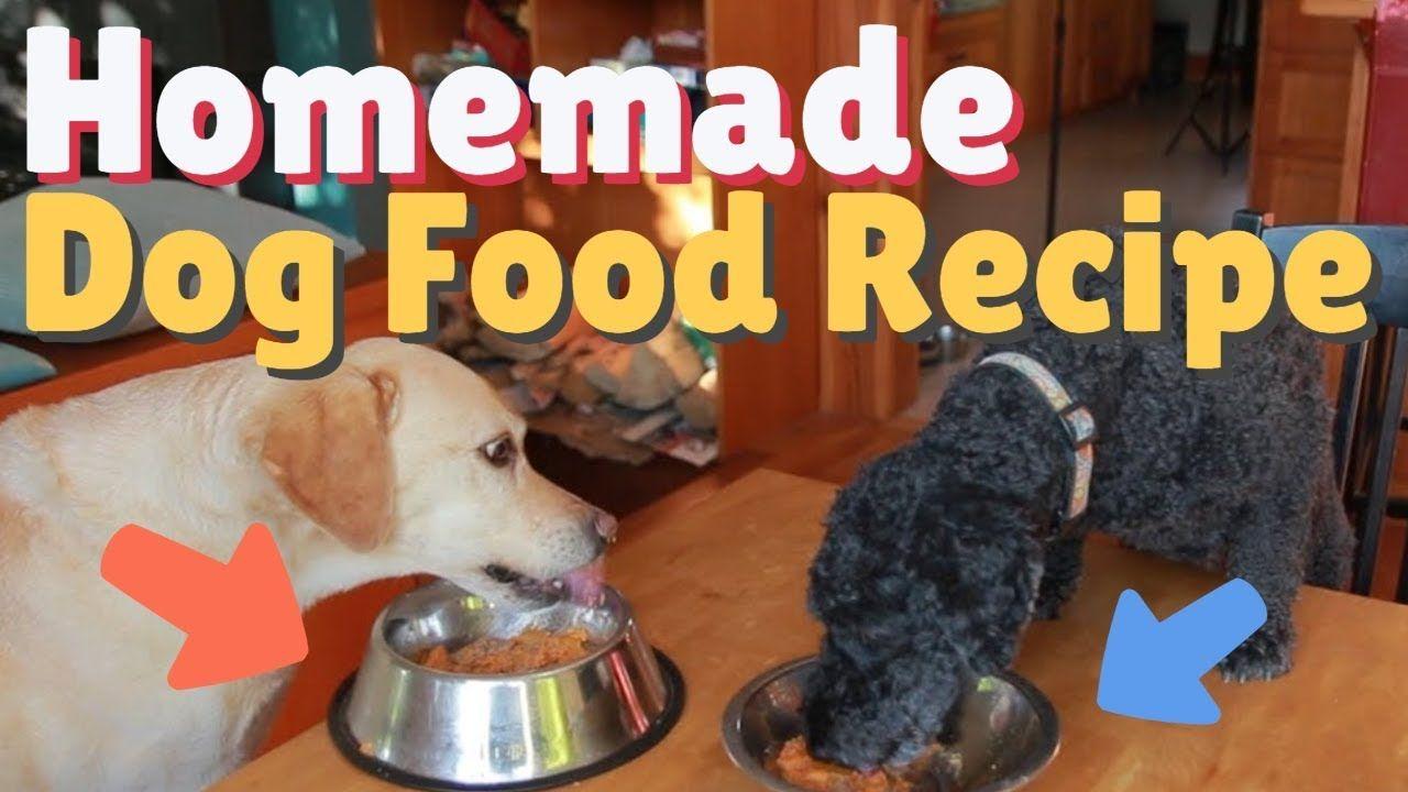 Dog Dinner Date Homemade Dog Food Youtube Dog Food Recipes