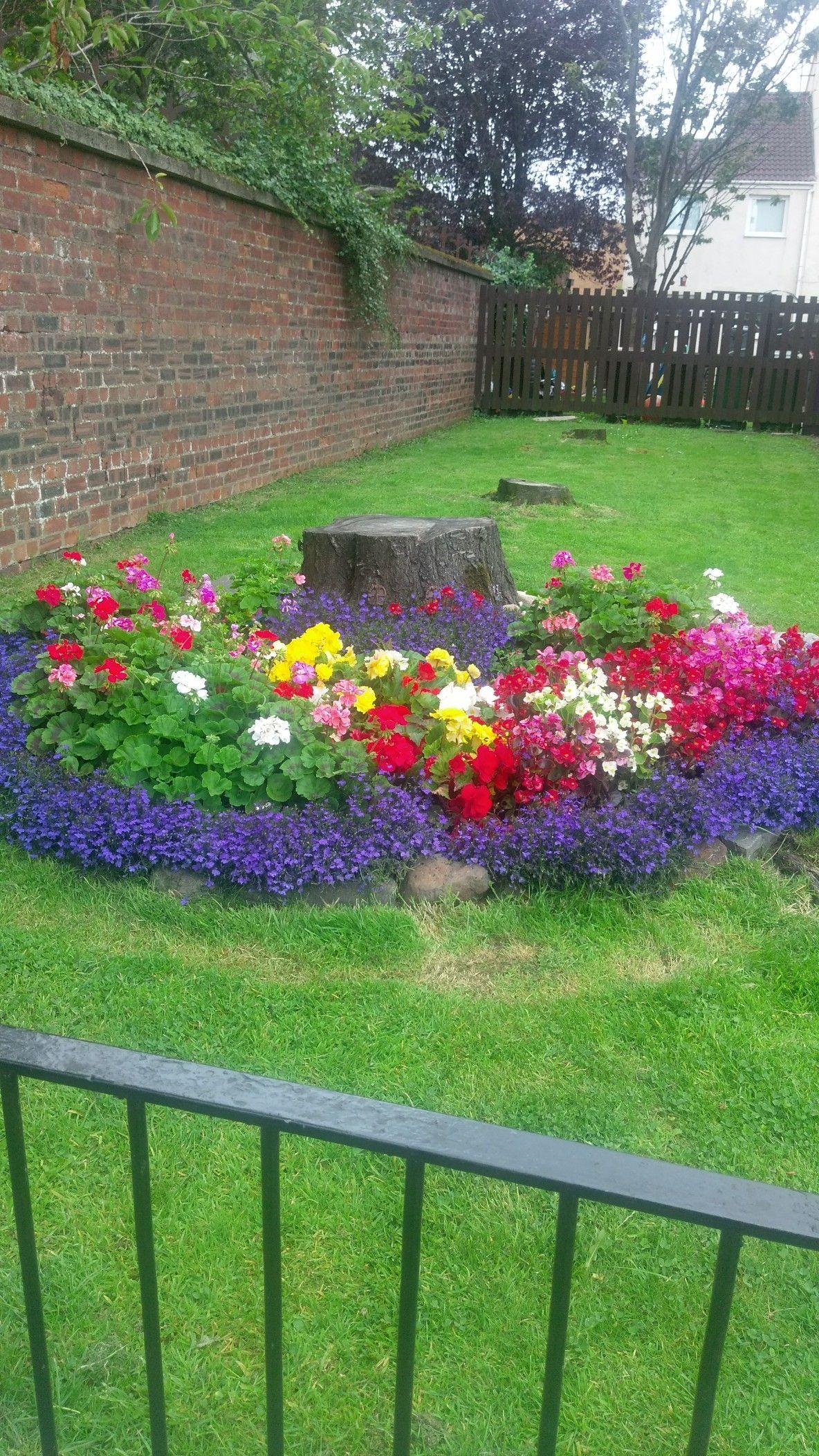 Full bloom fairy garden