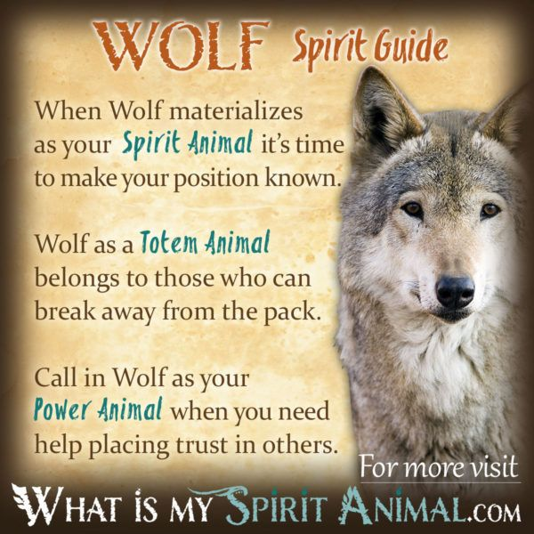 Wolf Symbolism Meaning Wolves Pinterest Power Animal Wolf