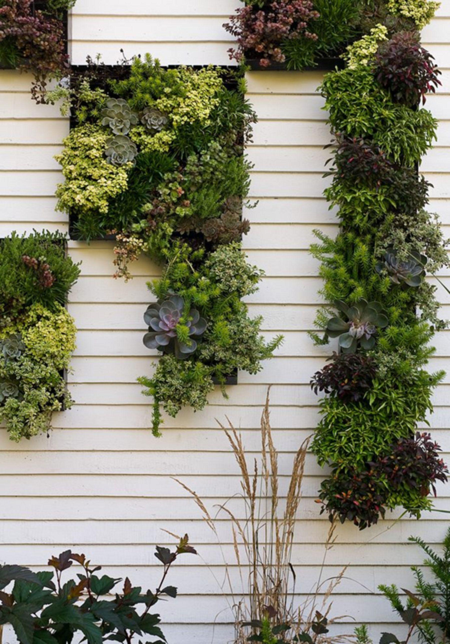 Best 15+ Creative DIY Vertical Garden Ideas to Increase ...