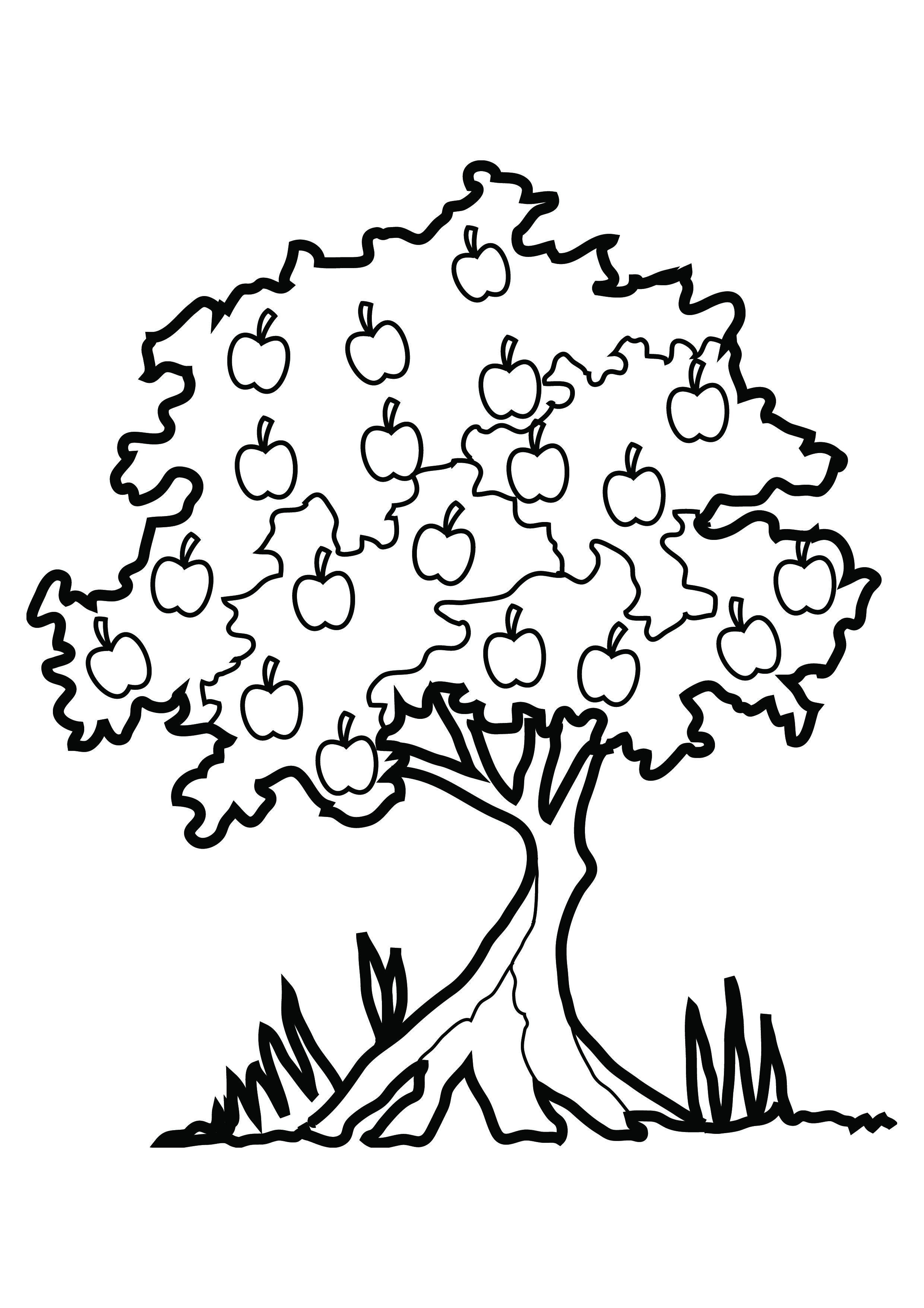 Coloring Pages Tree With Roots And Fruit Download