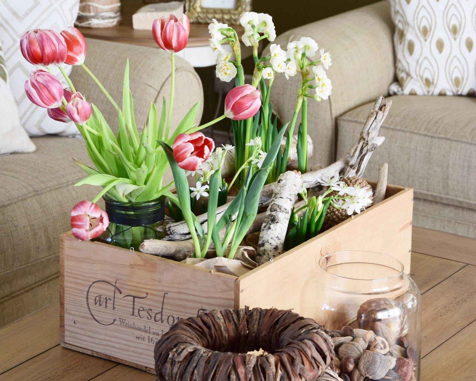Holt euch den Frühling mit einer Kiste voller Frühjahrsblüher ins ...