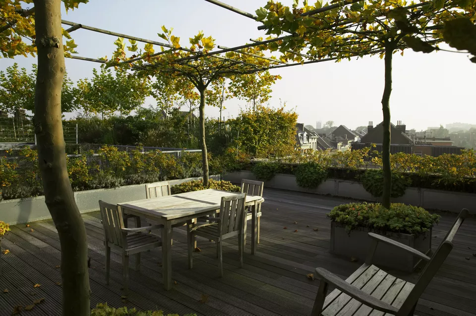 How to Create an Urban Rooftop Garden is part of Rooftop garden, Backyard garden layout, Rooftop terrace design, Roof garden plants, Terrace garden, Roof garden - Create a urban rooftop garden by choosing the proper containers and plants for gardening on a roof