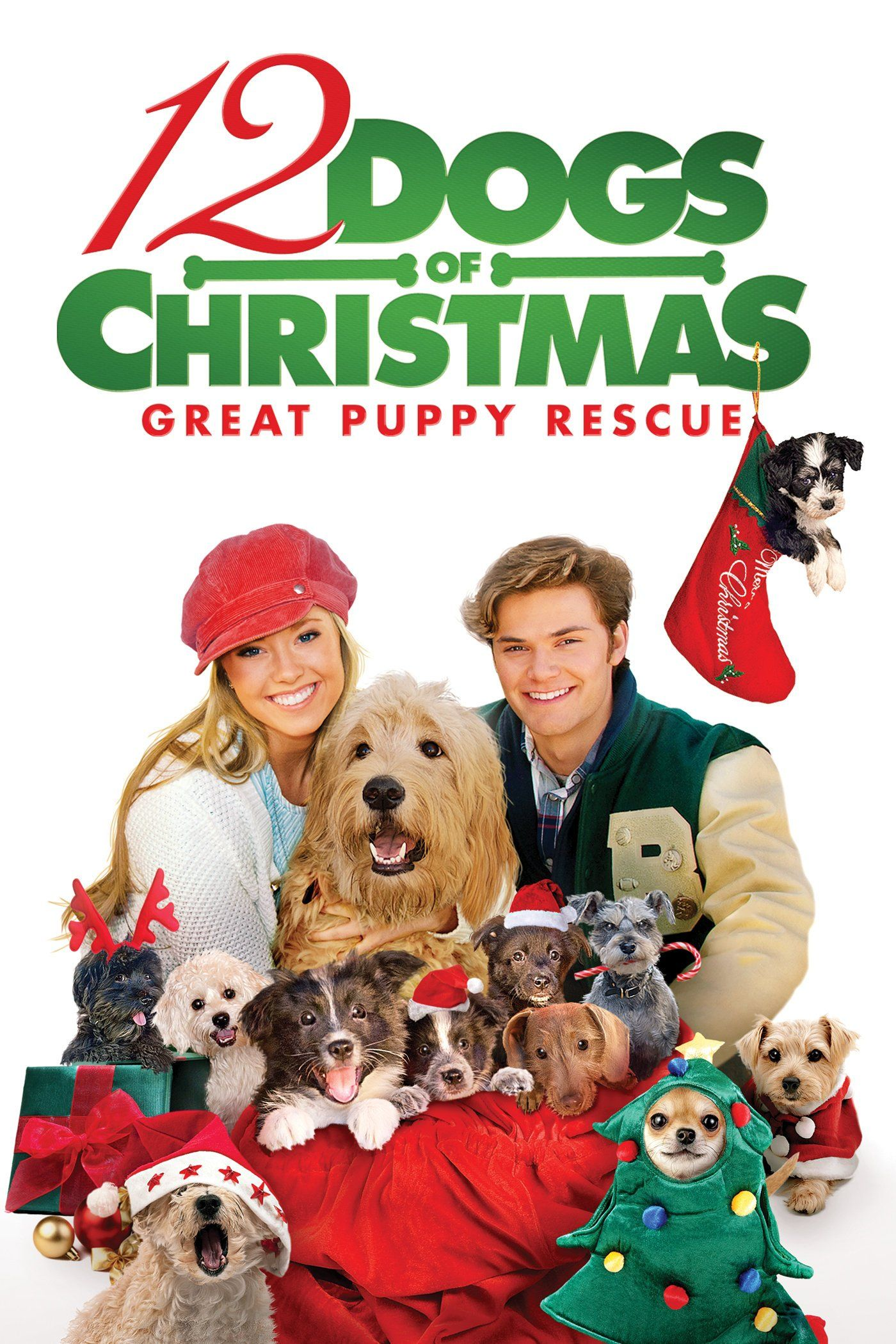 12 Dogs Of Christmas Great Puppy Rescue Holiday Movie Dogs Christmas Dog