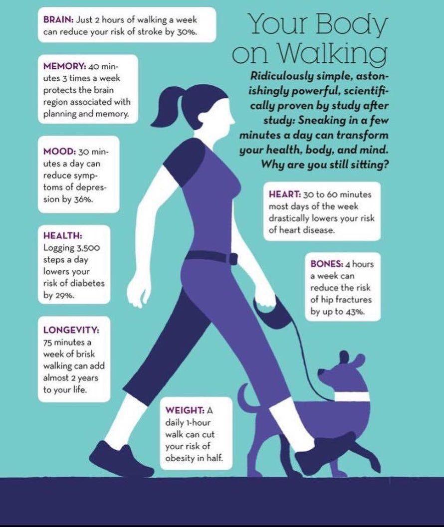 30 min walk daily