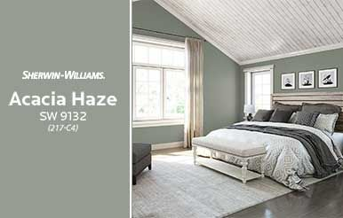 Sherwin Williams Acacia Haze SW 9132 Share Wall Paint