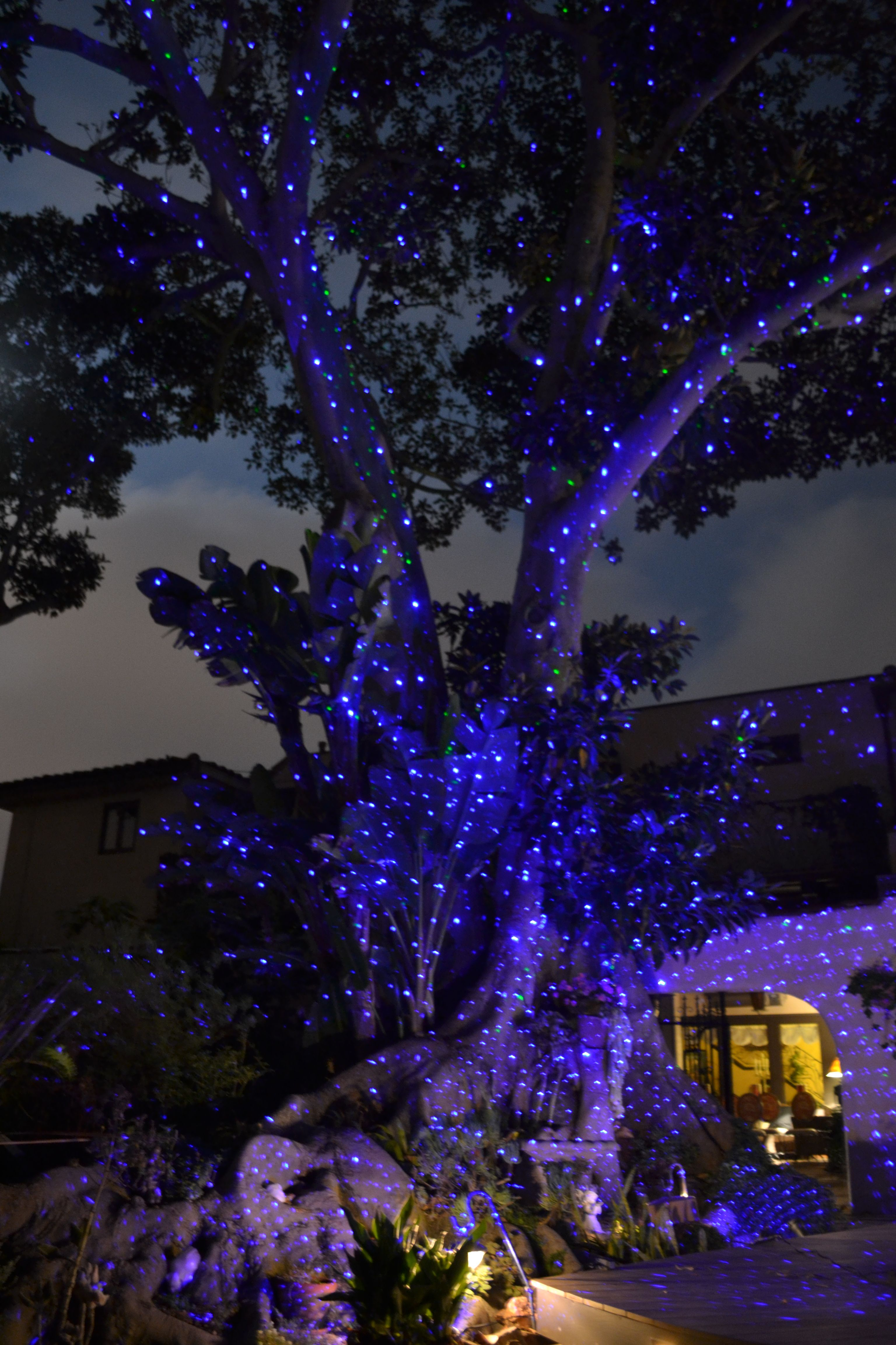 Create A Firefly Effect On Any Landscape Blisslights Spright Blue Lighting Decoration