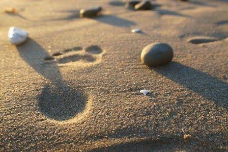 Proyecto MARES: Huellas en la arena