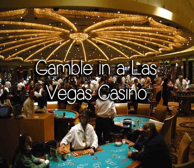 Просмотр казино рояль халява игровые автоматы джекпот бесплатно