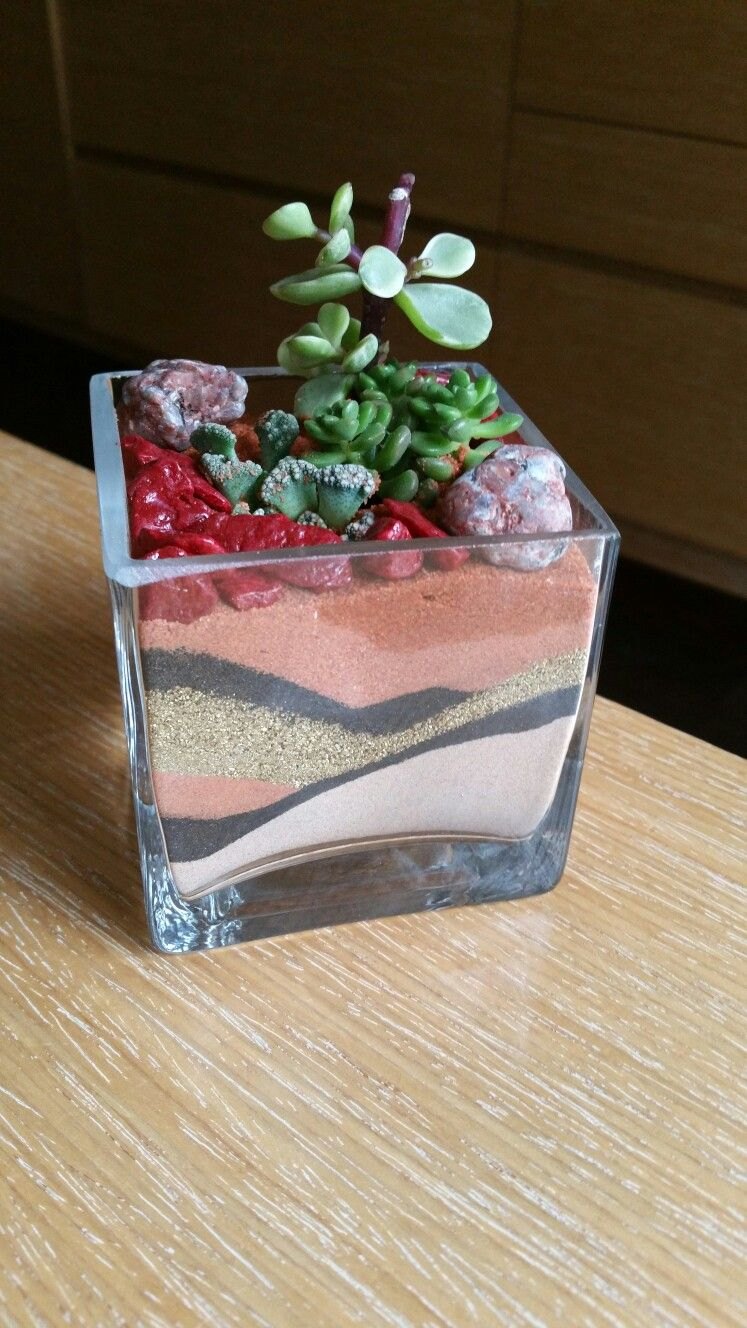 Florarium do it yourself 84