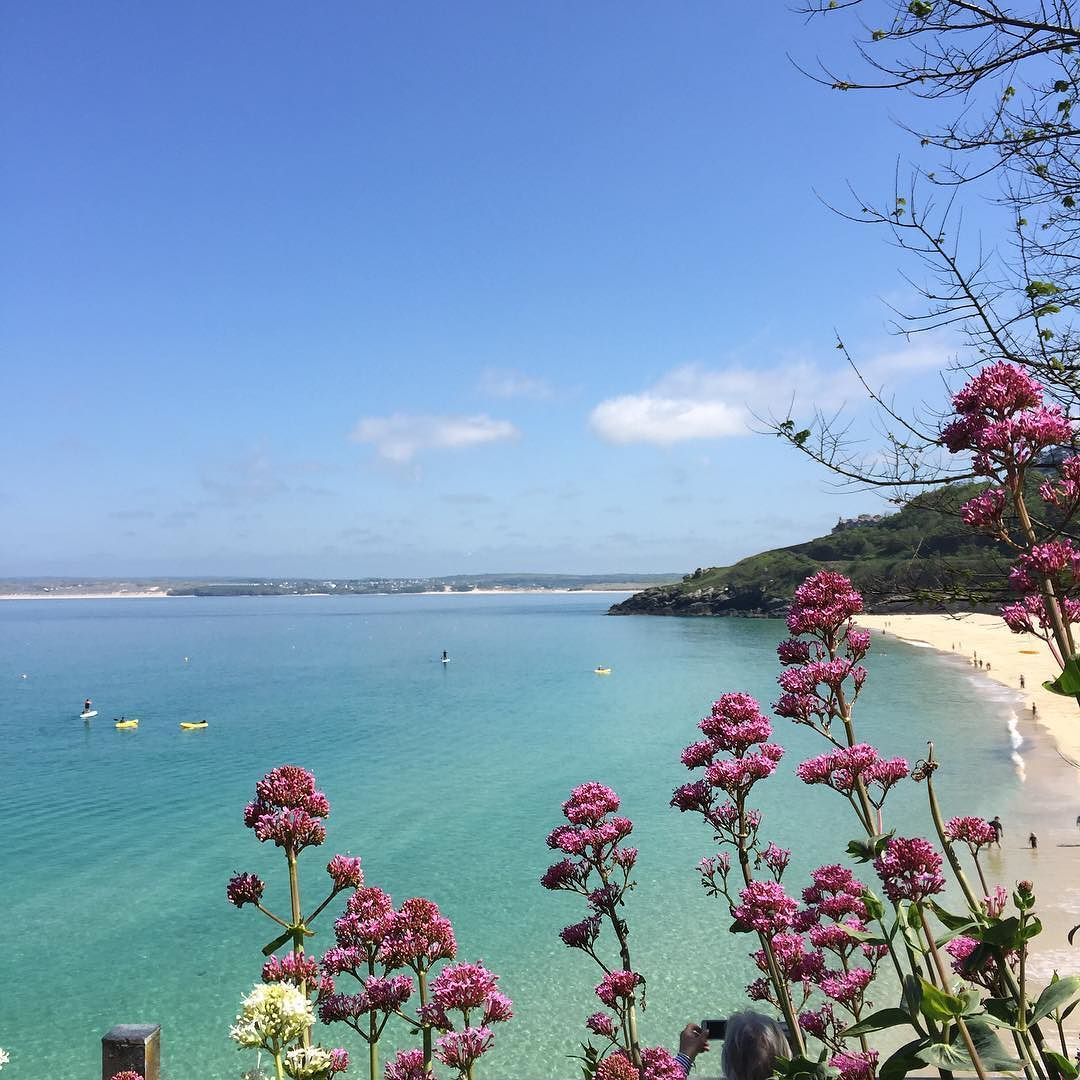Sunny Friday Vibes Directly From Gorgeous Cornwall Its Been A