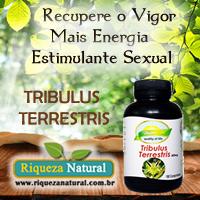 Tribulus Terrestres aumenta a produção natural da testosterona. Estimula o impulso sexual (em ambos os sexos).