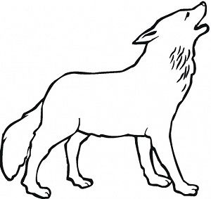 Arctic Wolves Coloring Pages New Coloring Pages Wolf Outline Animal Coloring Pages Wolf Drawing