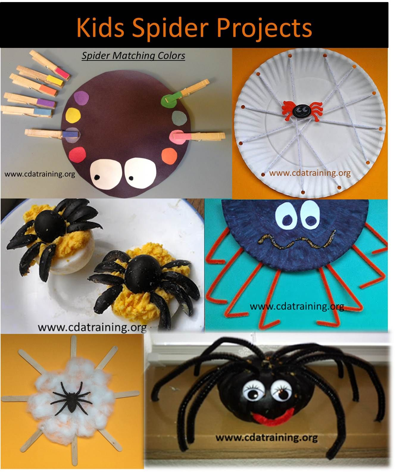 Kids Spider Projects First Grade