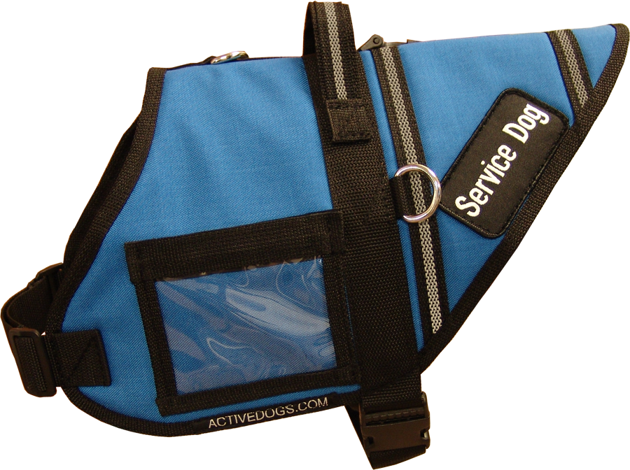 S&R Style Service Dog vest in blue from