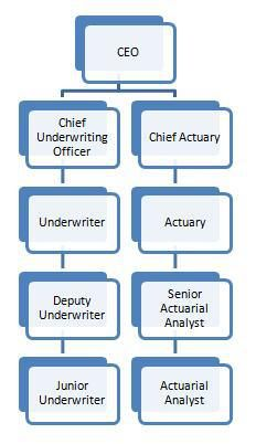 Actuary Underwriting Insurance Industry