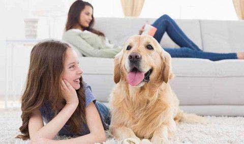 ¿Cuáles son las ventajas de tener una mascota para los niños - Wikiduca