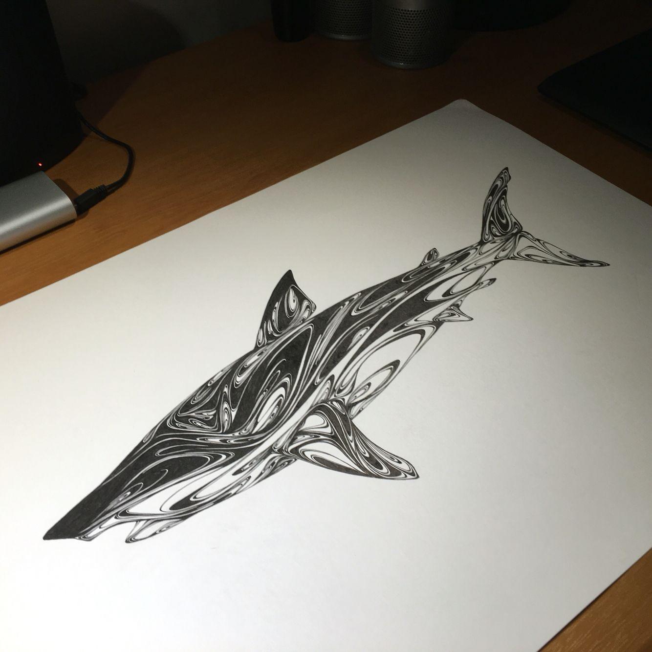 Carcharodon carcharias / Great white shark 완성했지만 제대로 공개는 겨울 블랙펜 정기전에서... #일러스트 #펜화 #작업 #그림 #손그림 #상어 #백상아리 #야작 #펜