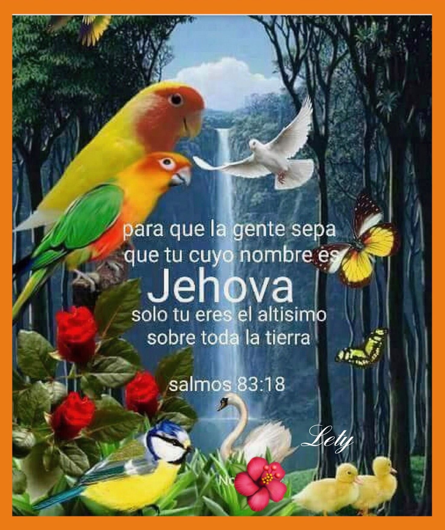 Jw Org Jehovah Witness Quotes Jw Bible Family Bible Study Encuentra las mejores imágenes de stock de imágenes full hd 1080. jw org jehovah witness quotes jw