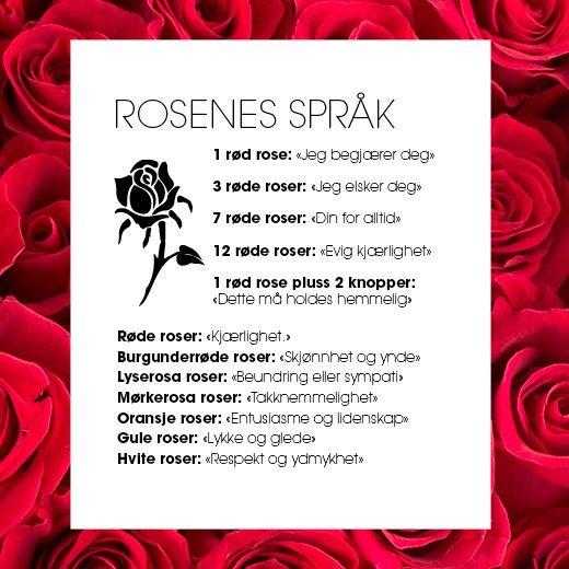 Rosenes språk: http://www.mestergronn.no/blogg/si-det-med-roser/