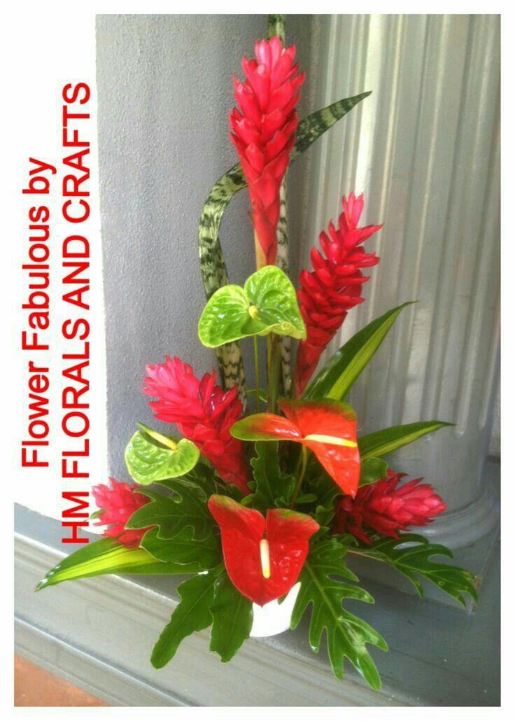 Pin De Olga Jaramillo Em Jardin Arranjos De Flores Tropicais