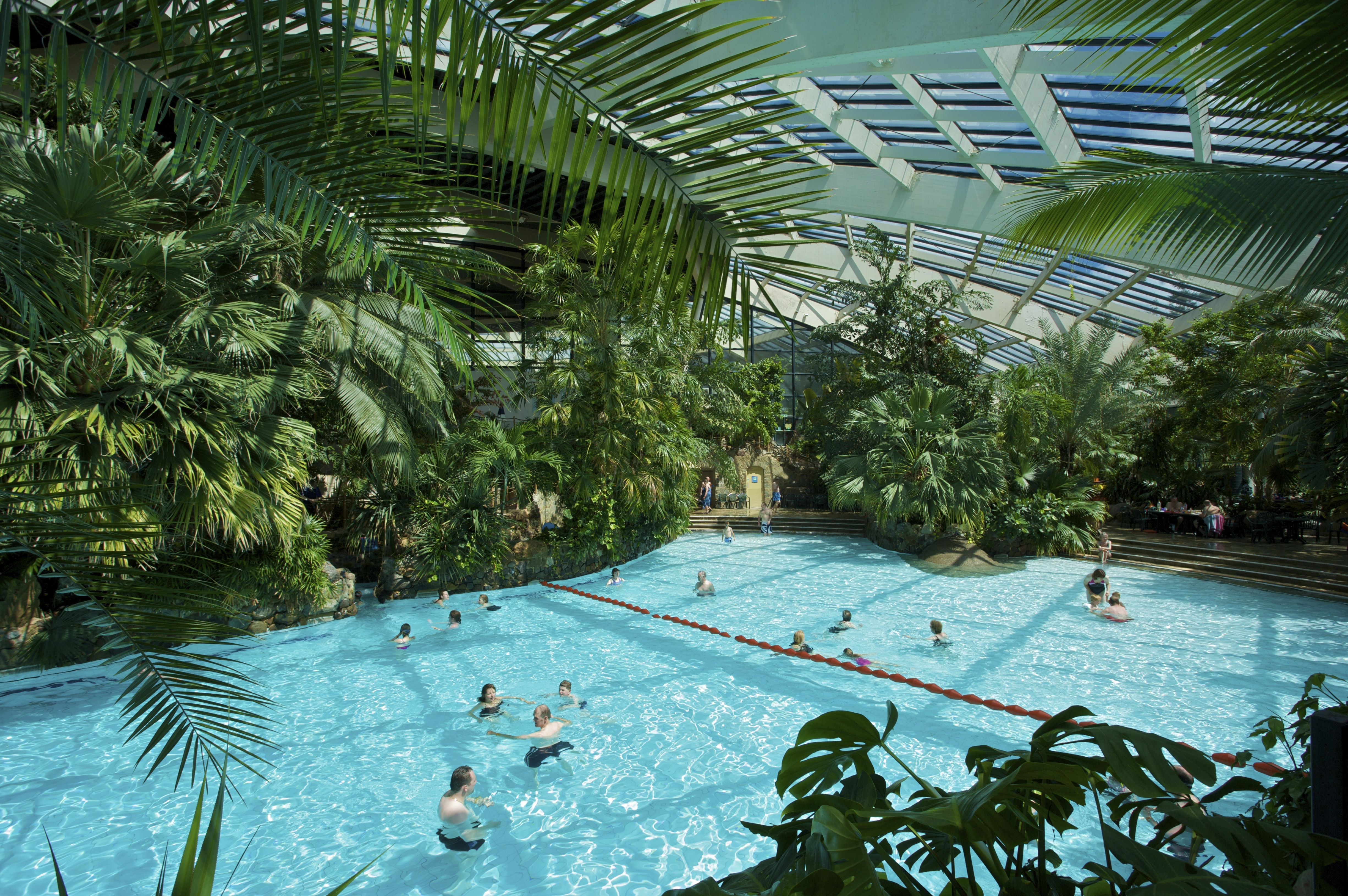subtropical swimming paradise center parcs longleat forest centerparcs pinterest center