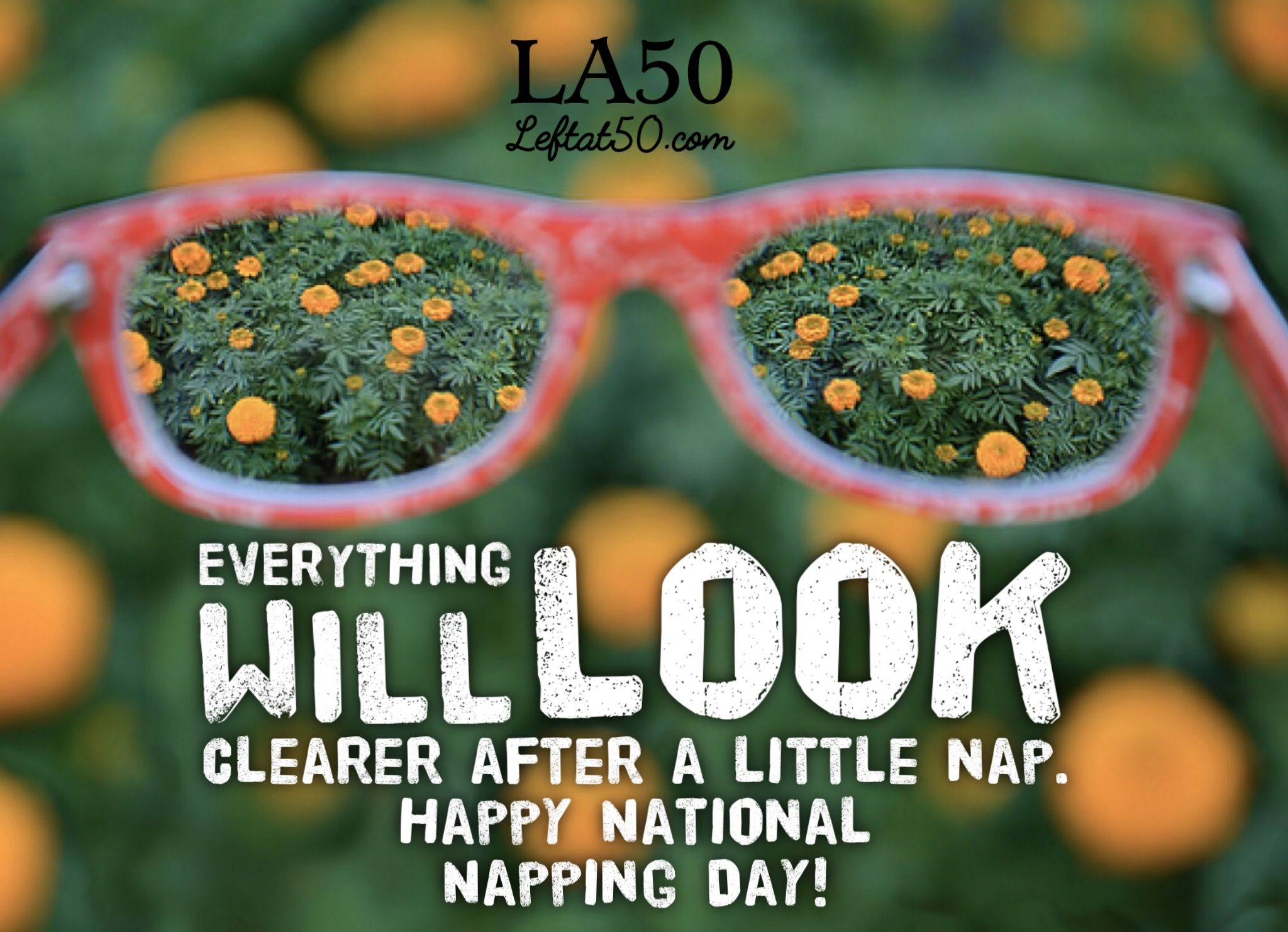 Everything Will Look Clearer After A Little Nap Happy National Napping Day Nationalnappingday Day National Nap