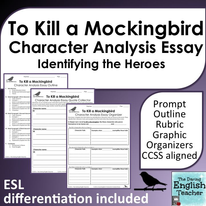 To Kill A Mockingbird Essay Character Analysis  Teaching American  A Ccss Aligned Essay That Includes Differentiation For Harper Lees Novel To  Kill A Mockingbird Health Essay Example also Narrative Essay Sample Papers  Example Of English Essay