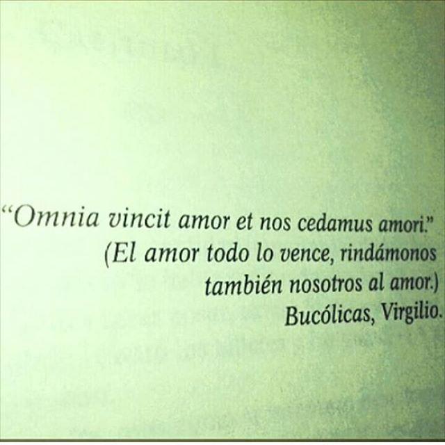 El amor todo lo vence #cementeriodelibros Libro: El cuarto arcano ...