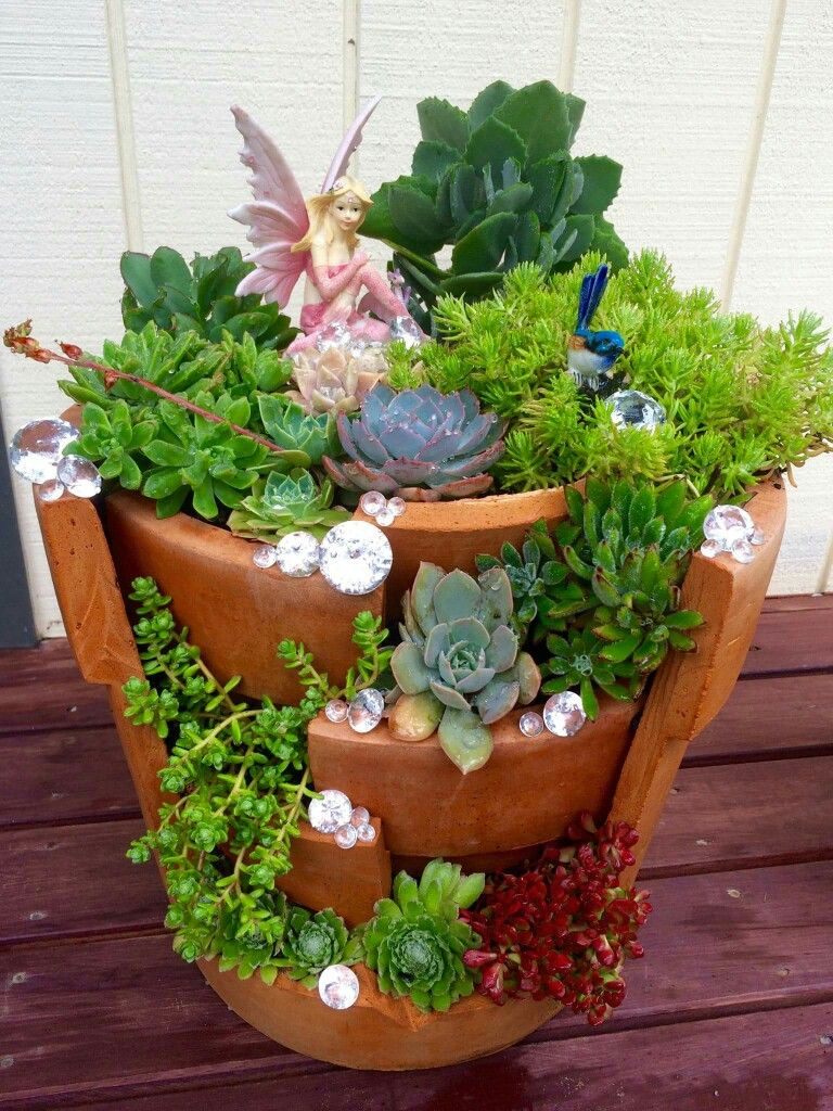 Pin By Norma Mier On Succulent Designs Ideas Fairy Garden Pots Fairy Garden Diy Fairy Garden Designs