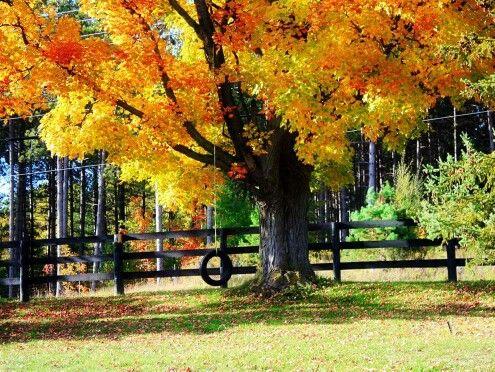Such A Pretty Sight Fallmy Favorite Season Autumn