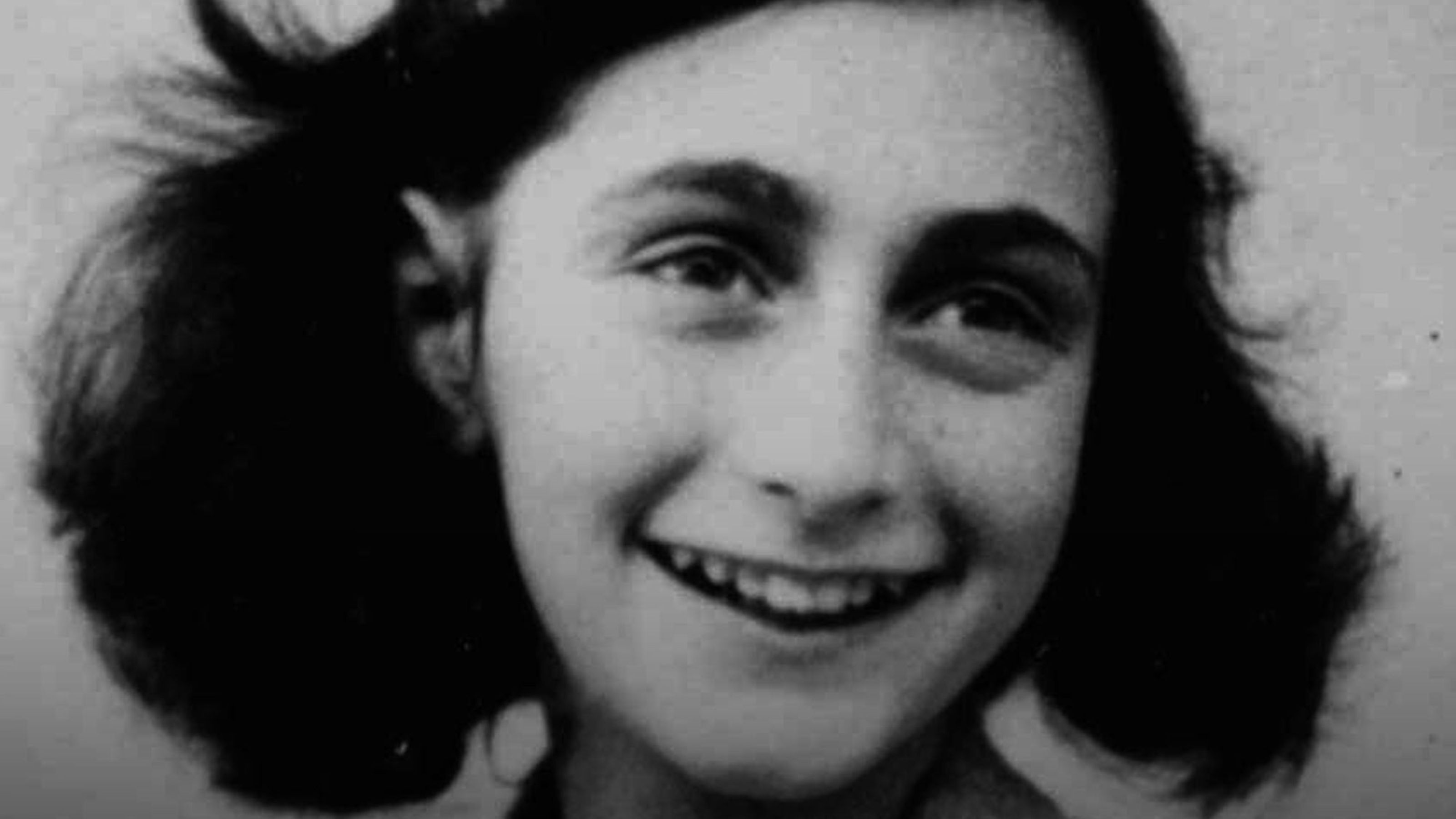 17 best images about the diary of anne frank 17 best images about the diary of anne frank melting pot fabrics and livingston