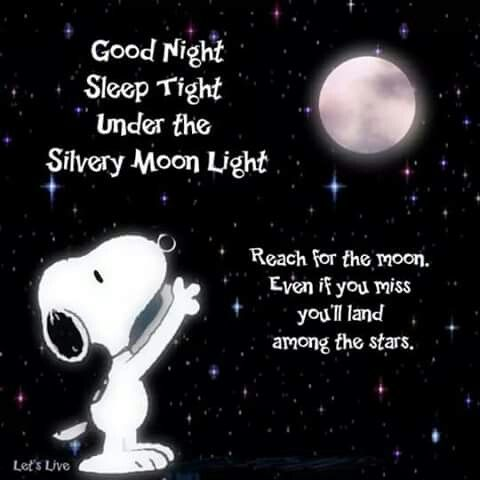 Pin By Maricela Elias Sanchez On Goodnight Snoopy Good Night