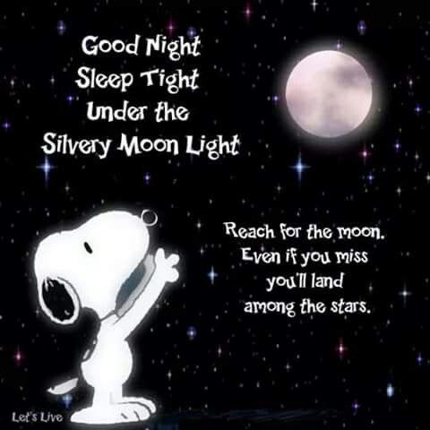 Pin By Maricela Elias Sanchez On Goodnight Snoopy Good Night