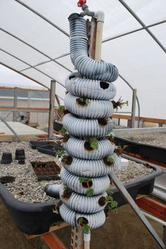 One Photo Tower Garden Aquaponics Indoor Vertical Vegetable Garden Aq.