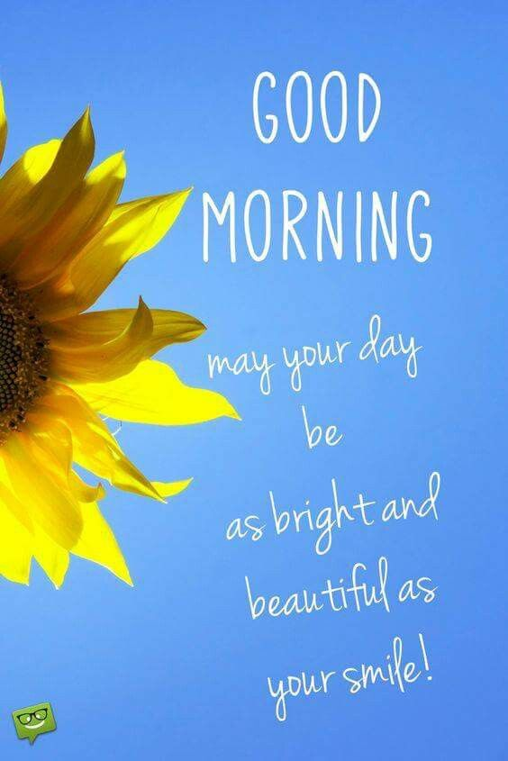Pin by narendra pal singh on morning q pinterest morning images smile at people today m4hsunfo