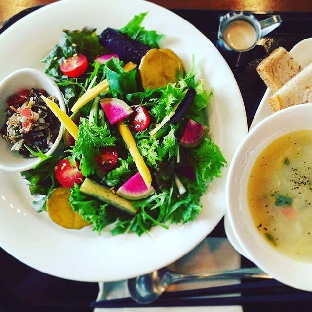 Organic Salad Plate 本日もカラフル野菜たっぷりのサラダプレートございます!