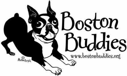 Boston Terrier Rescue Southern California Los Angeles Adoption