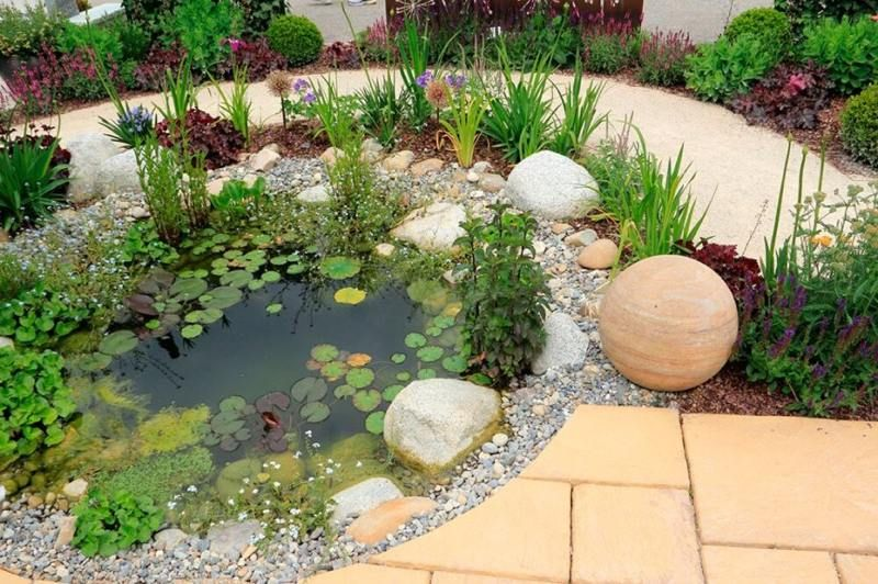Bassin aquatique de jardin tapes de construction et for Petit bassin aquatique