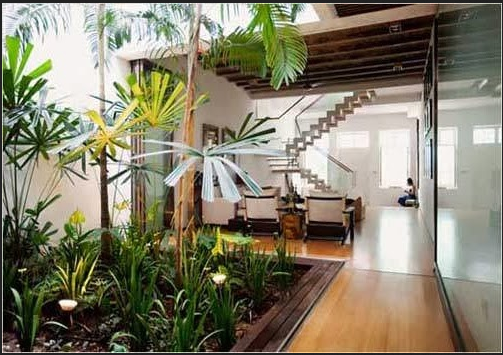 desain taman dalam rumah kecil desain pinterest best
