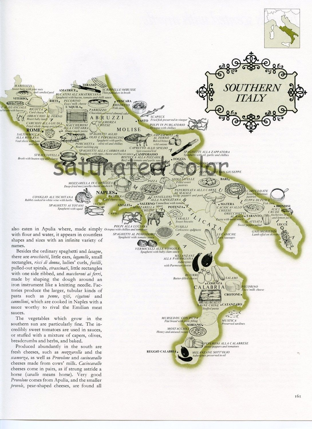 Vintage Southern Italy Food Map Naples Rome Calabria Molise