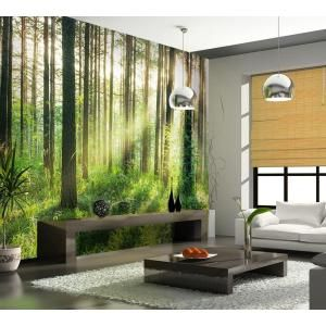 Ideal Decor 144 in. W x 100 in. H Sunset in the Woods Wall Mural-DM964 - The Home Depot