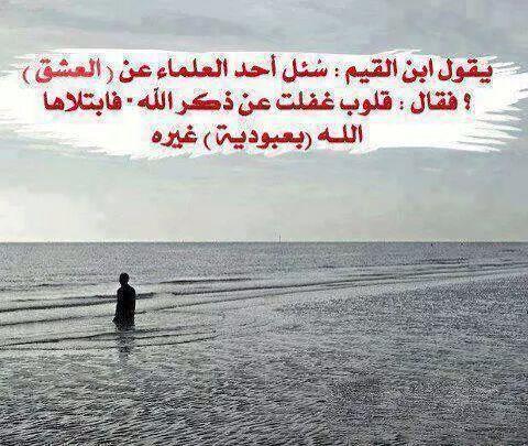 كن مسلما كوني مؤثرة هذه سبيلي ادعو الى الله هذا هو الاسلام حب القران قنوان دانية Islamic Quotes Arabic Love Quotes Arabic Quotes