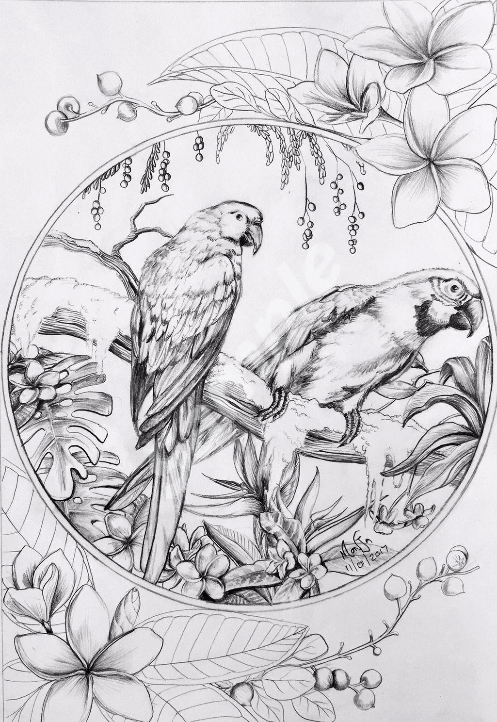 - Colour My Dreams Coloring Book Birds Coloring Books, Animal